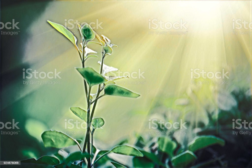 Light shining on a green sprout, sustainable energy digital painting stock photo