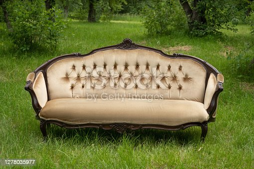 Light sofa in vintage style stands on green grass in garden with plants and trees In background. Nature concept. Furniture concept. High quality photo.