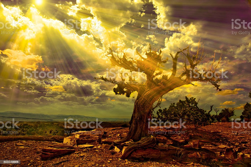 Light streams into rocky desert scene stock photo