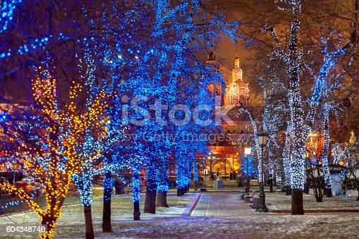 Light Tree Christmas Decoration,Bolshoi Theatre square park,Zaikonospassky monastery,Moscow,Russia,Nikon D3x