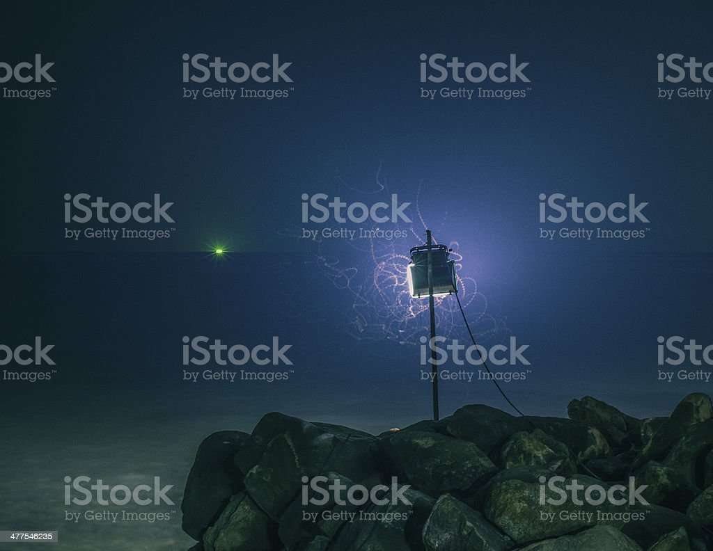 light with night mothes stock photo