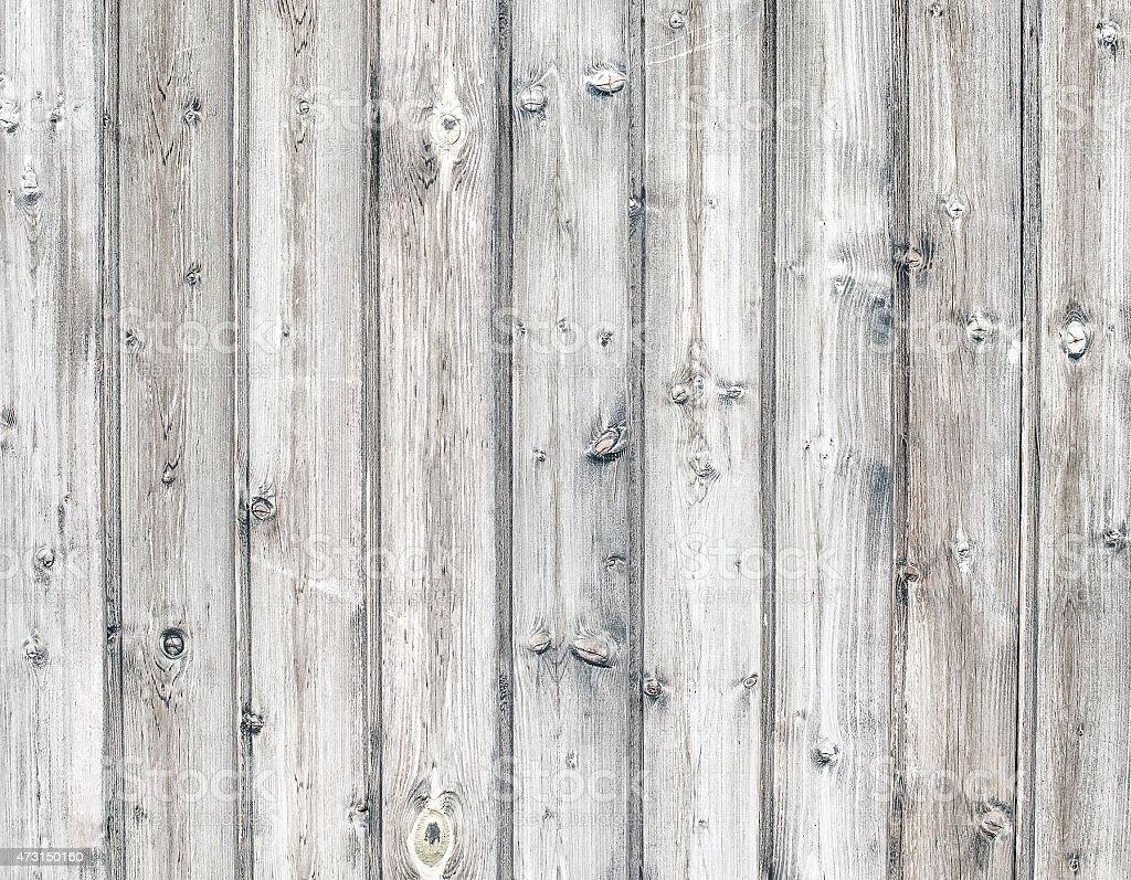 Кора дерева фото