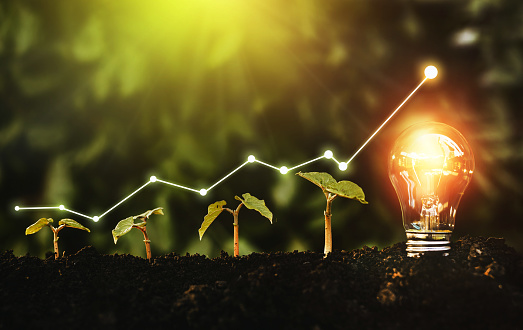 Lightbulb is located on the soil, plant are growing.Renewable energy generation is essential in the future