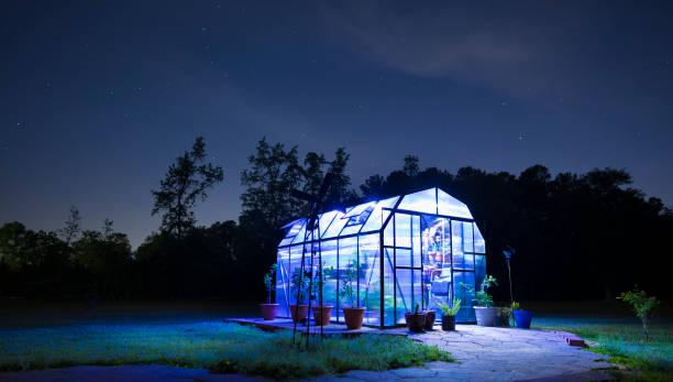 lighted greenhouse after the sun has set - теплица стоковые фото и изображения
