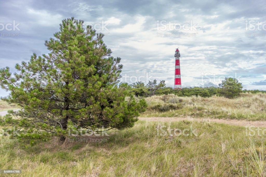 Leuchtturm Ameland, Niederlande – Foto