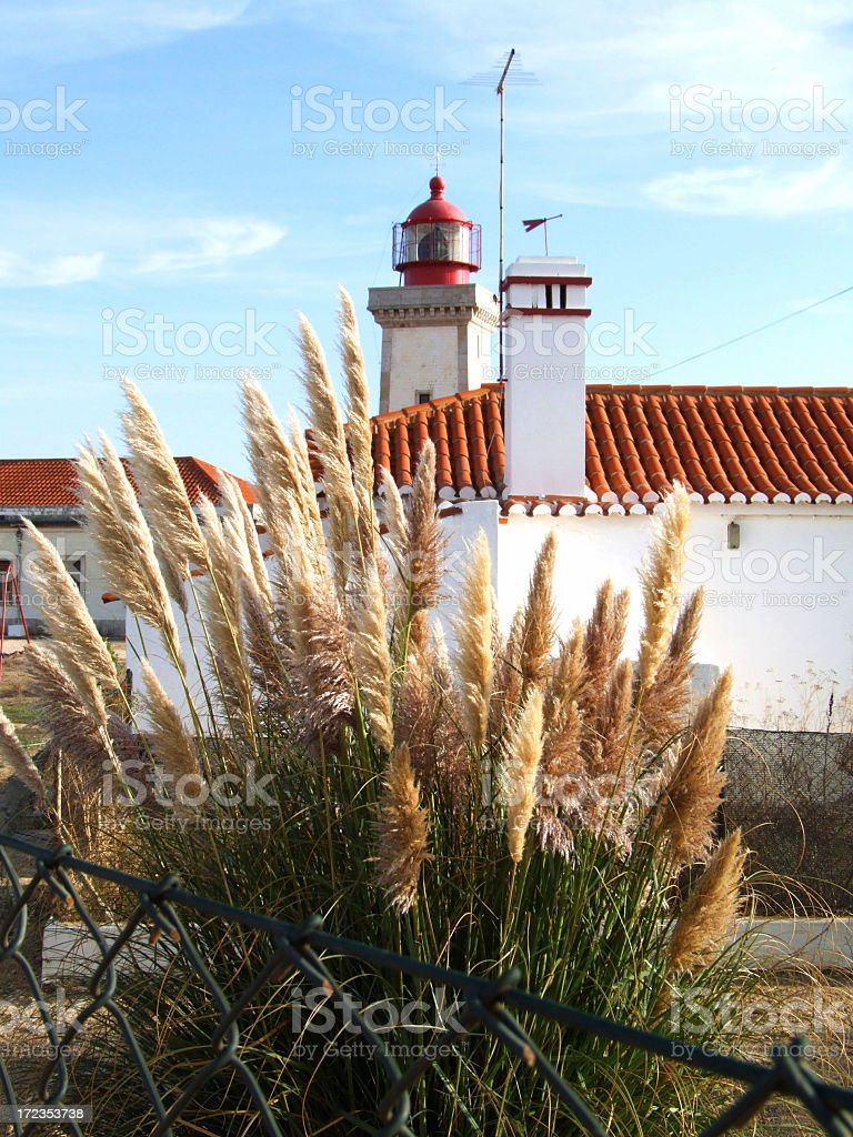 Lighthouse and grass royalty-free stock photo