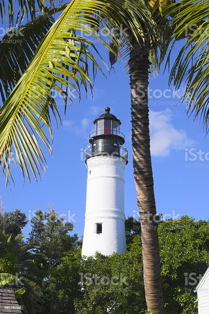 Lighthouse and palms royalty-free stock photo