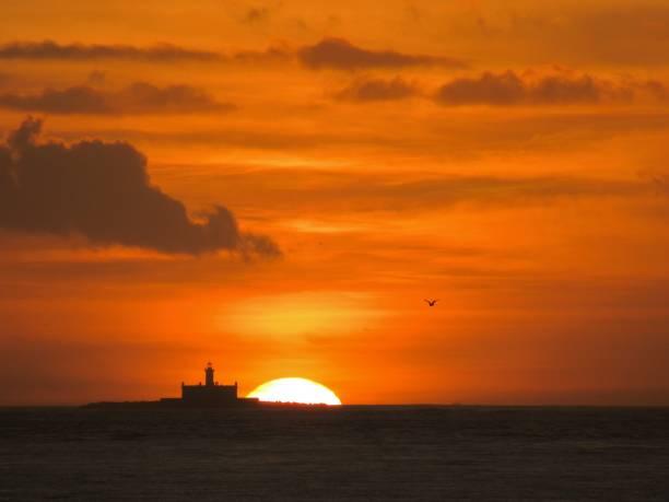 lighthouse at sunset (bugio, portugal) - bugio imagens e fotografias de stock
