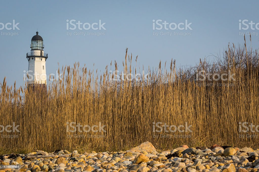 Lighthouse framed by Seagrass and Rocky Shore stock photo
