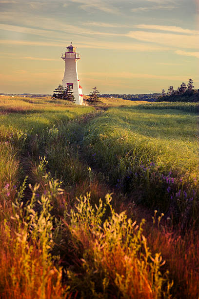 lighthouse in prince edward island, canada - prince edward island stock photos and pictures