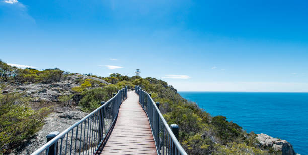 leuchtturm in tasmanien - kanada rundreise stock-fotos und bilder