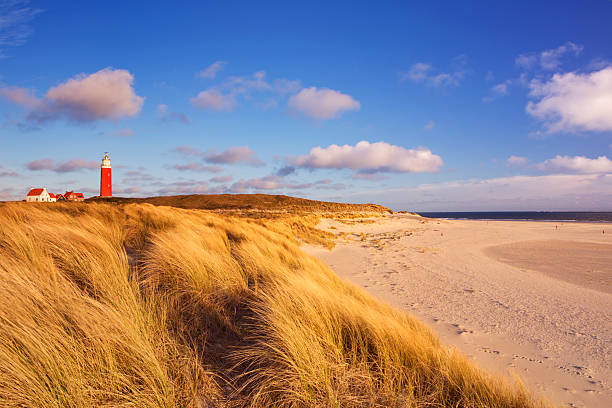 Lighthouse on Texel island in The Netherlands in morning light stock photo