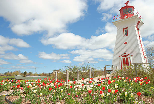 lighthouse. prince edward island, canada. - prince edward island stock photos and pictures