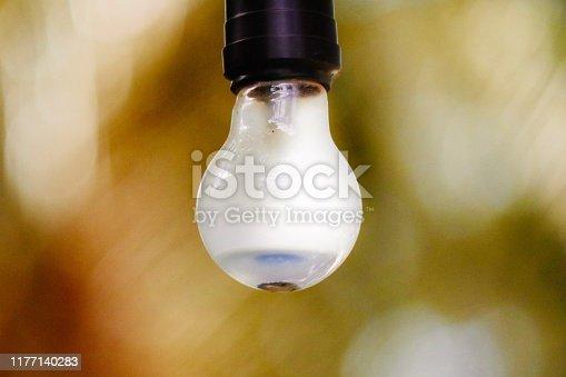 1137999886 istock photo Lighting bulb 1177140283