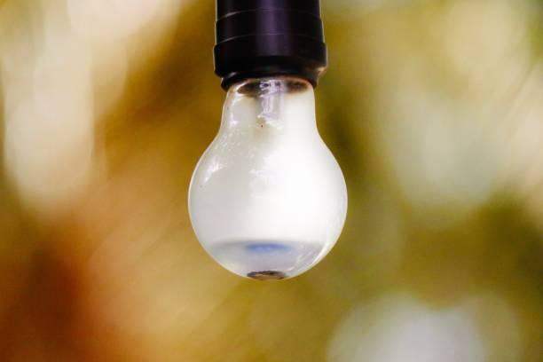 ampoule d'éclairage - josianne toubeix photos et images de collection