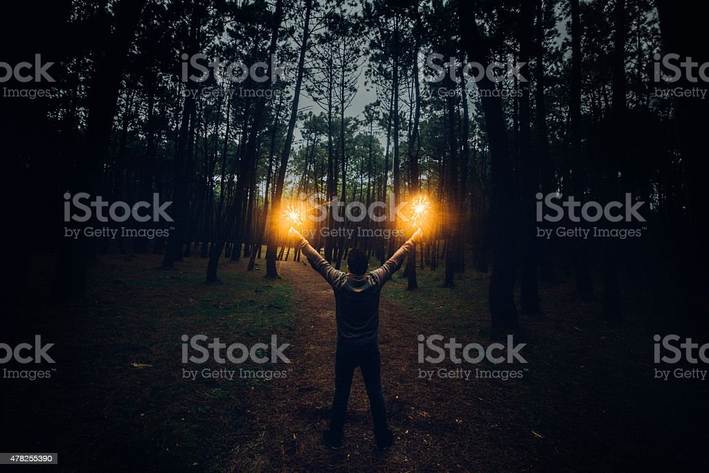 Lighting up the forest stock photo