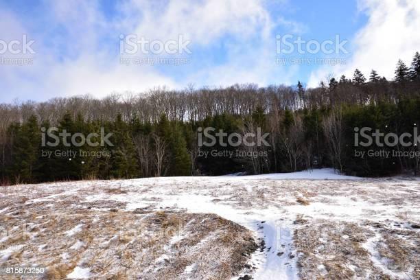 Photo of Lightly falling snow in the Wentworth Valley (Nova Scotia Canada)