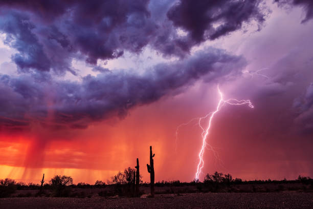 Lightning bolt strikes from a storm at sunset. stock photo