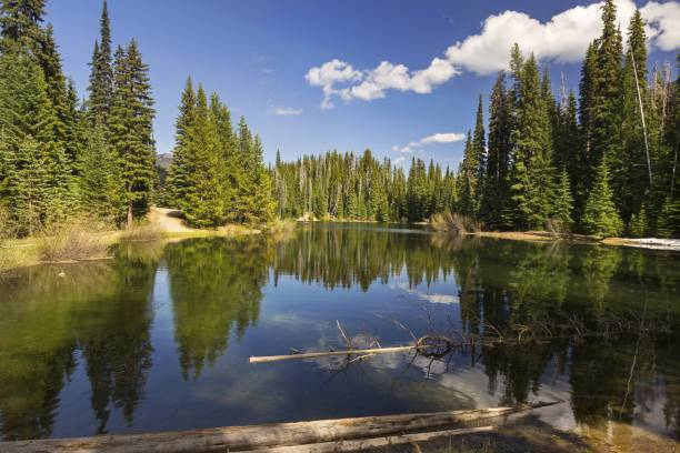 lightning lake manning park british columbia canada - provincial park stock photos and pictures
