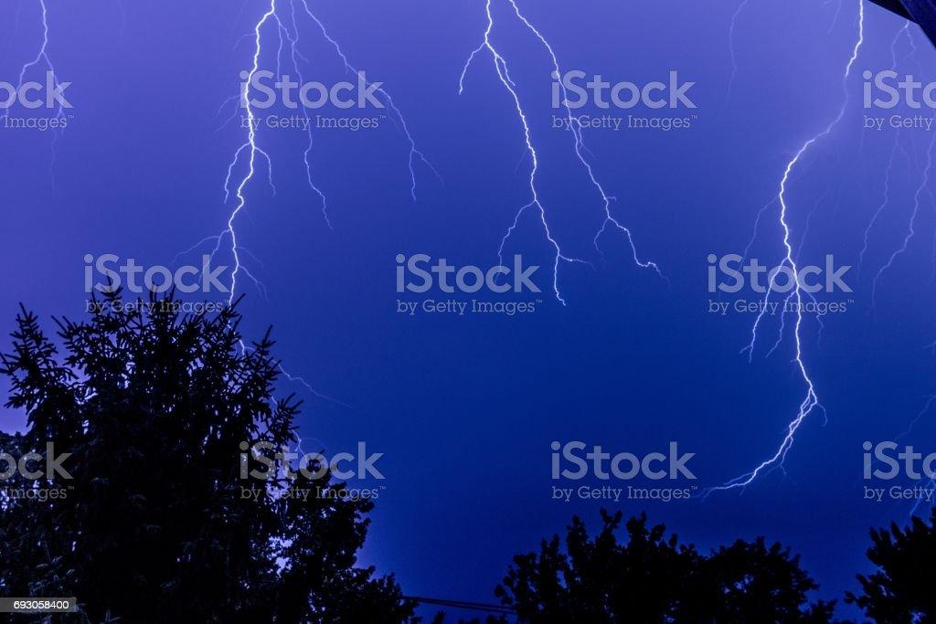 lightning over trees stock photo