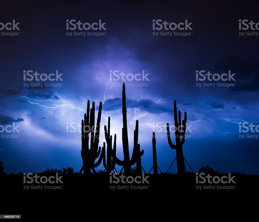 Lightning & Saguaros stock photo