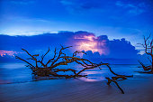 Lightning Storm at Sunrise Driftwood Beach in Jekyll Island, Georgia, GA, USA