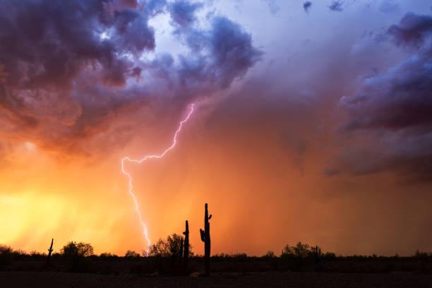 lightning strikes from a sunset thunderstorm - greve imagens e fotografias de stock