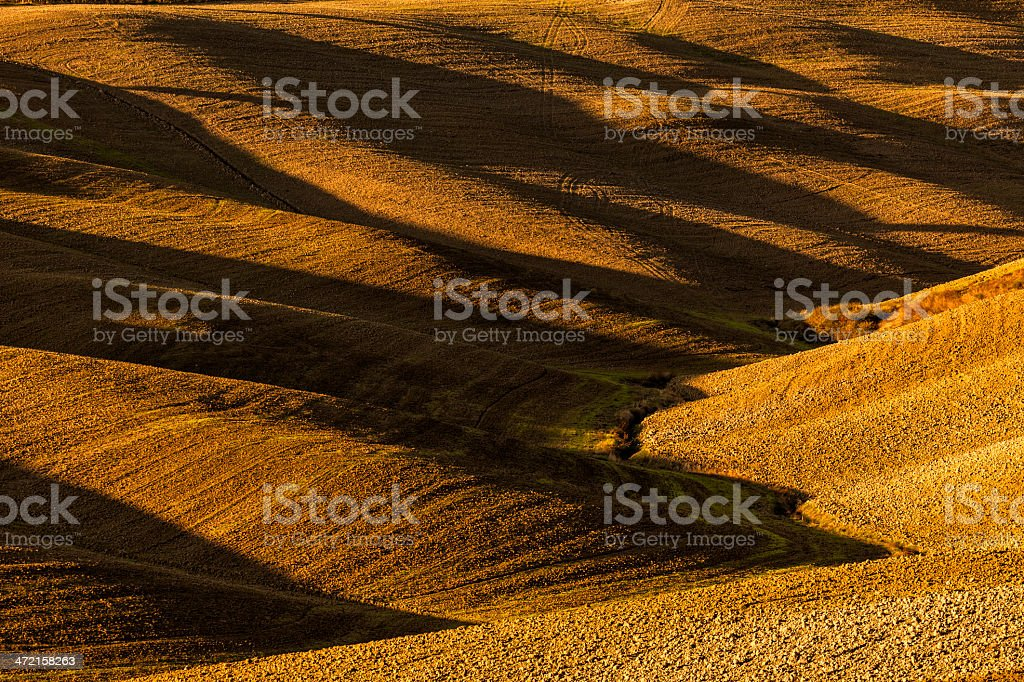 Lights and Shadows on Rolling Hills at Sunrise, Tuscany, Italy royalty-free stock photo
