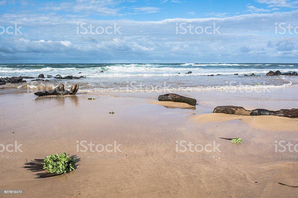 Lihue sand beach, Kauai, Hawaii stock photo