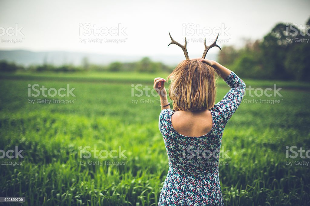 Like beautiful animal stock photo