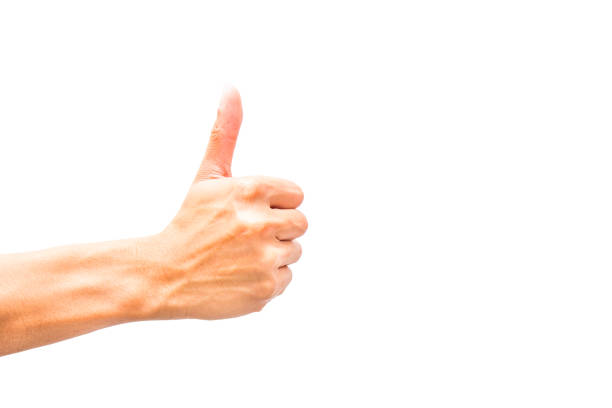 like or thumb up hand sign on isolate background stock photo