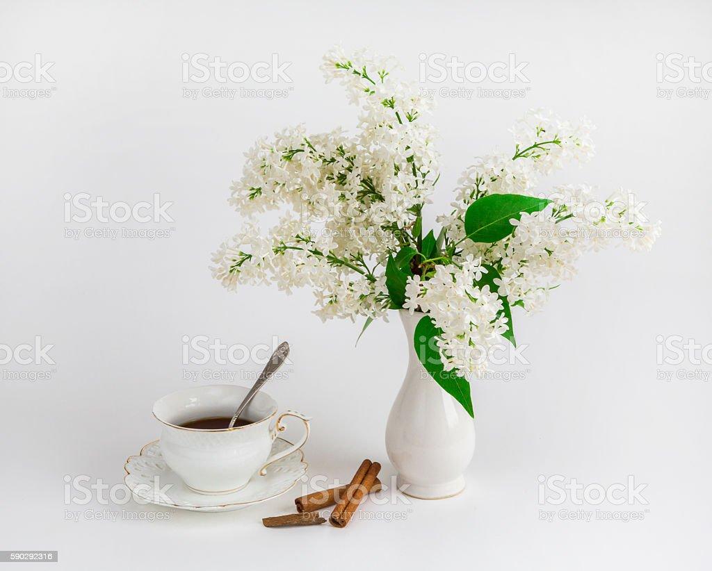 Lilac and a cup of coffee royaltyfri bildbanksbilder