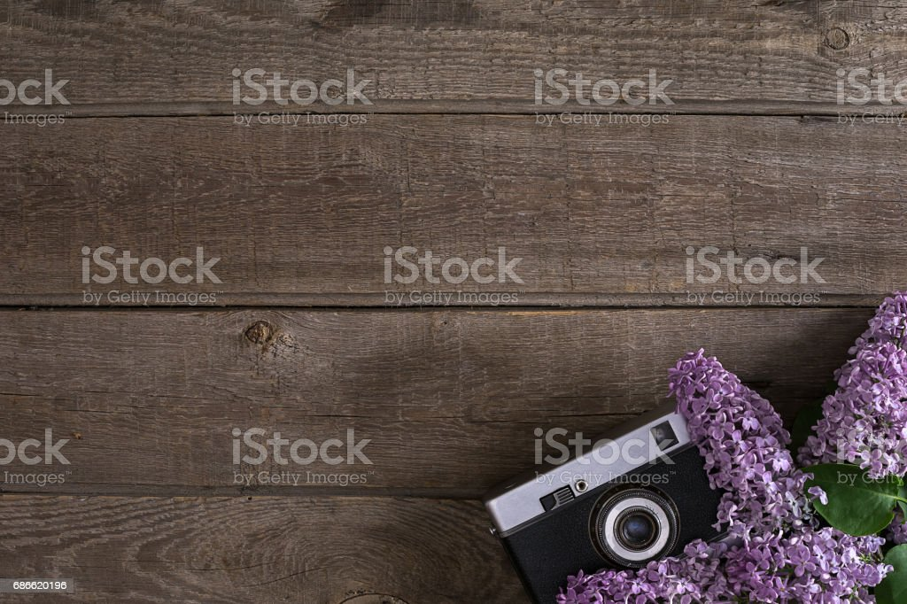 Lilac blossom on rustic wooden background with empty space for greeting message. Camera old. Top view royalty-free stock photo