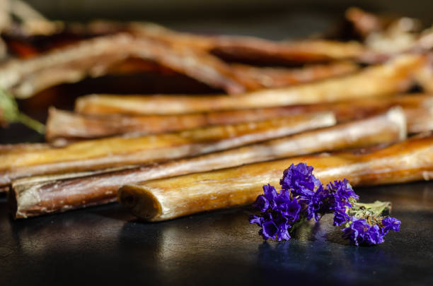 Lilac flower in the foreground. In the background Dried sticks bully for dogs. Dried beef pizzle on a dark background. Chewing treats. Domestic animal. Animal care. Selective focus. Eye level shooting. animals with big penis stock pictures, royalty-free photos & images