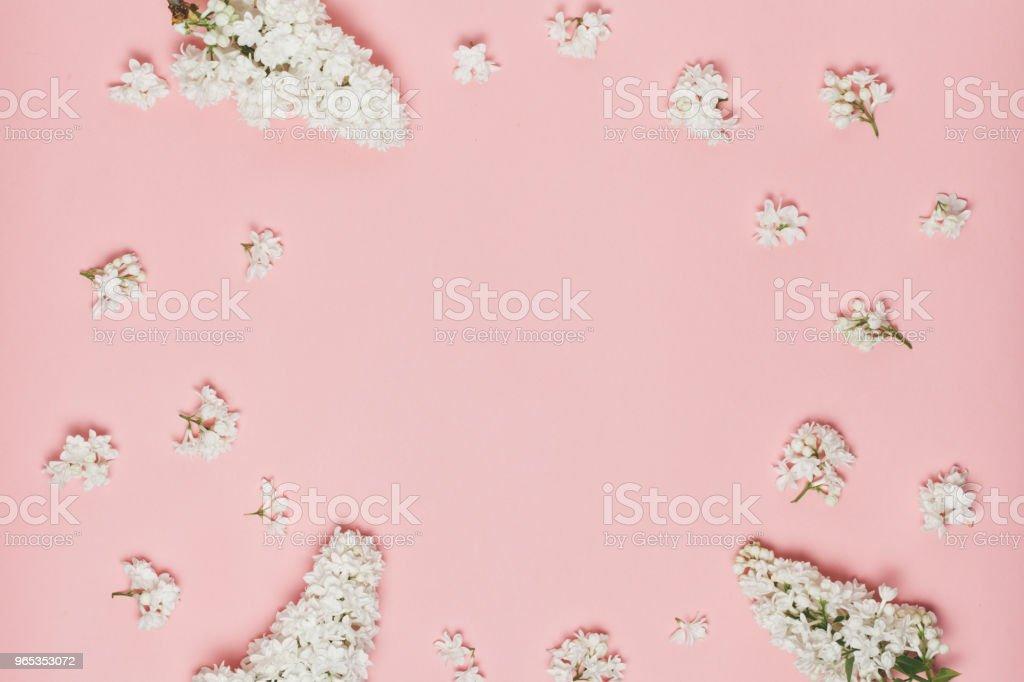 Lilac flowers frame zbiór zdjęć royalty-free