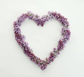 lilac flowers in the form of heart