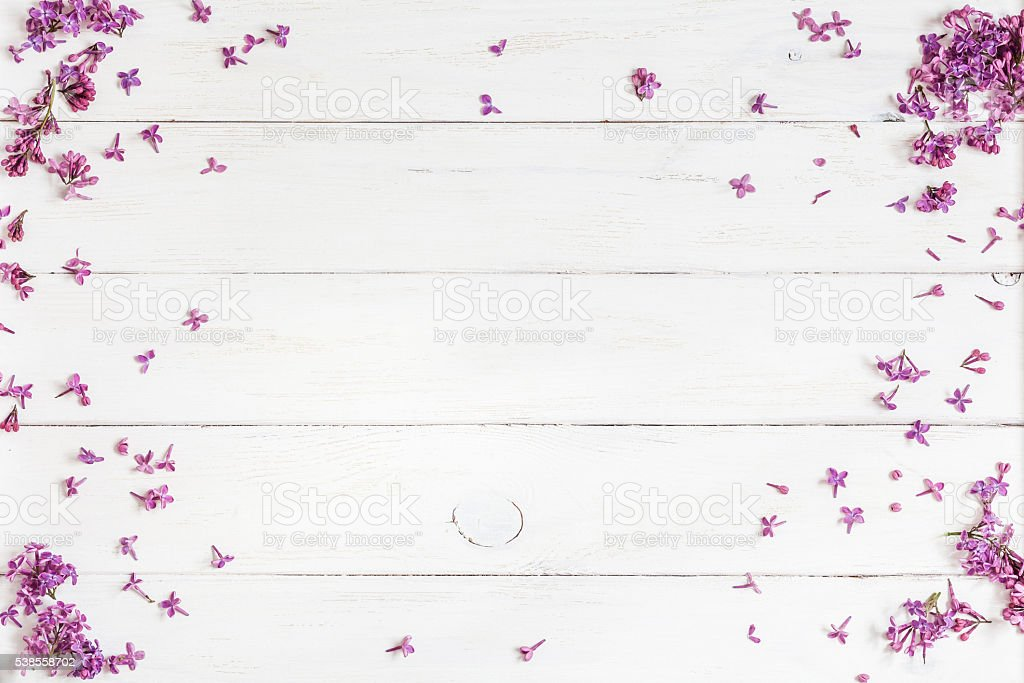 lilac flowers on white wooden background, top view, flat lay stock photo