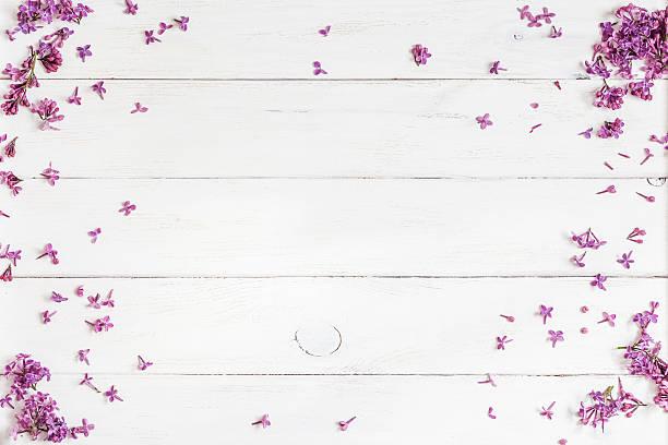 fliederfarbene blumen auf weißer hölzerner hintergrund, aufsicht, flache legen - holzblumen stock-fotos und bilder