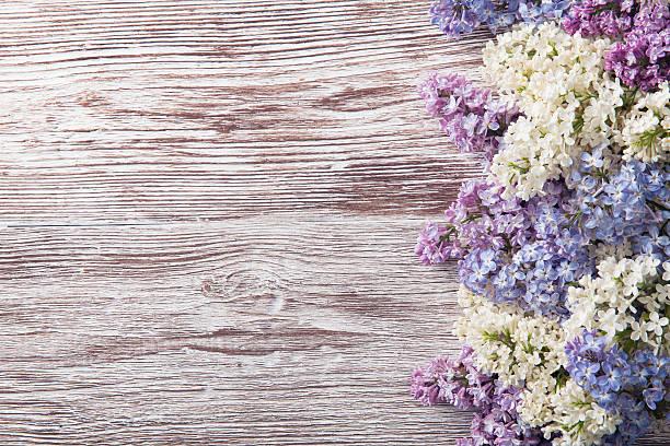 Lilac flowers on wood background blossom branch vintage wooden picture id501446243?b=1&k=6&m=501446243&s=612x612&w=0&h=1ilx7hfg4tytrcrspnyq1wjtwdvjqb5k0kj1iplcvlo=