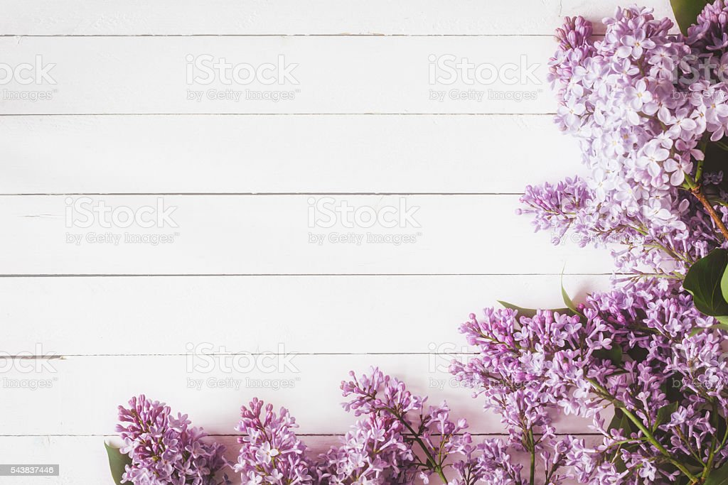 Lilac flowers on wooden background. Floral card stock photo