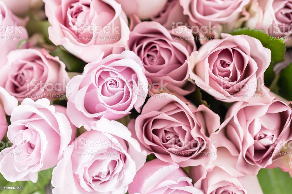 Photo de stock de Lila Rose De Jardin Bouquet De Fleurs De Roses ...