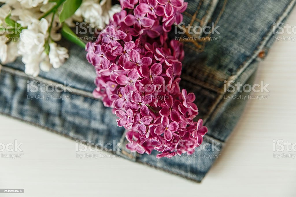 Lilac in the Jeans Pocket.Selective Focus royalty-free stock photo