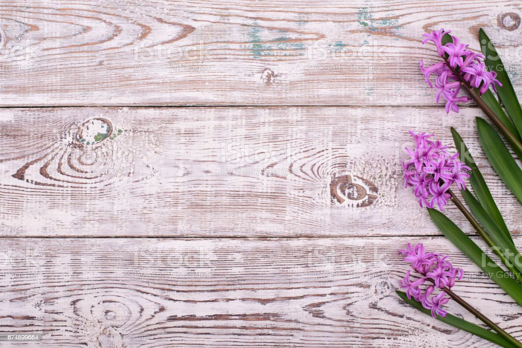 Lilac Spring Flowers Border On Wooden Rustic Table Above View Royalty Free Stock Photo