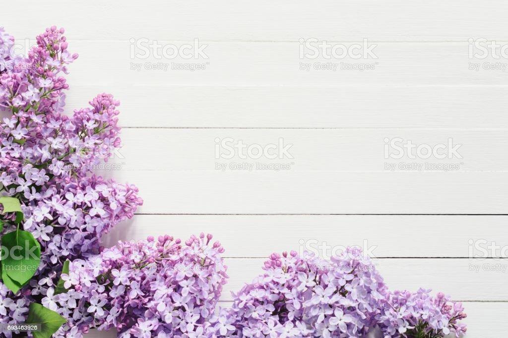 Cadre Fleurs Lilas Sur Fond Blanc Photos Et Plus D Images De Arbre