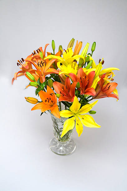 lilies in a vase stock photo