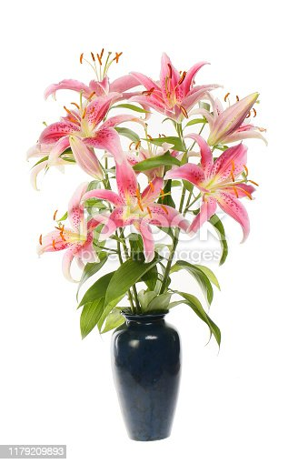 Arrangement of lilies in a vase isolated against white