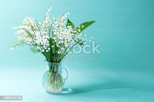 A DSLR photo of Lilies-Of-The-Valley (Convallaria Majalis) - bouquet of forest flowers in a vase on an aquamarine background. Space for copy.