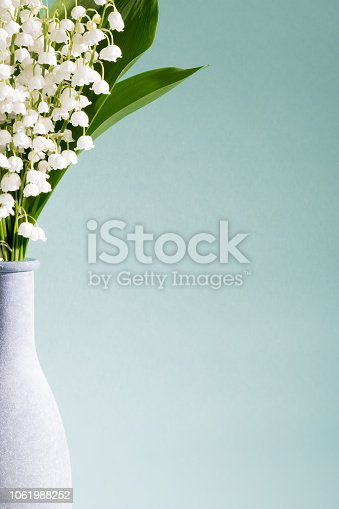 A DSLR photo of Lilies-Of-The-Valley (Convallaria Majalis) - bouquet of forest flowers in a vase on a gray background. Much space for copy.