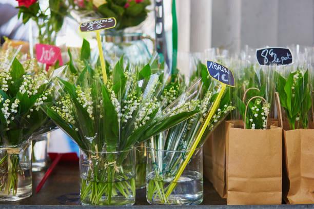 fleur de lys de la vallée sur français marché à paris - muguet photos et images de collection