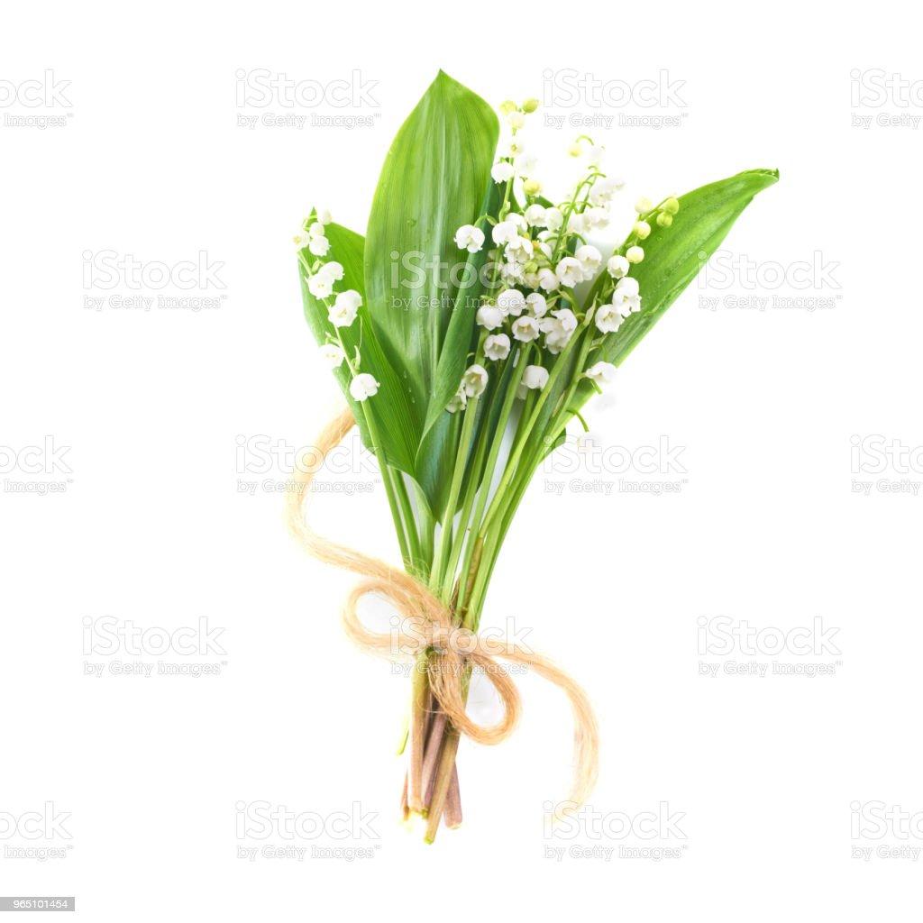 Lilies of the valley zbiór zdjęć royalty-free